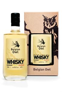 Picture of Belgian Owl 3yo 2016 release